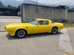1976 Pontiac Firebird en venta.
